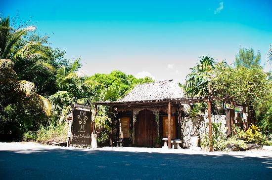 Photo of Yoga Shala Tulum