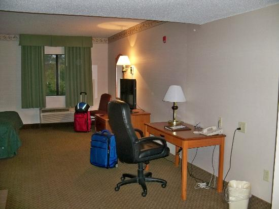 Comfort Inn & Suites: Nice desk area.