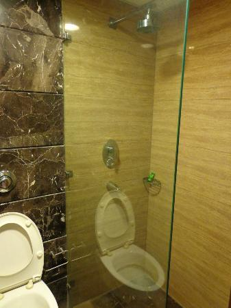 : The bathroom in our room during our second stay