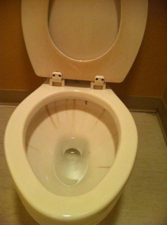 Fredericksburg Inn & Suites: stained toilet