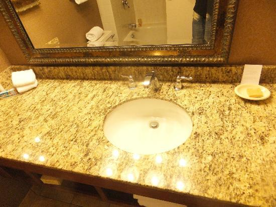 Hyatt Regency Rochester: Bathroom2
