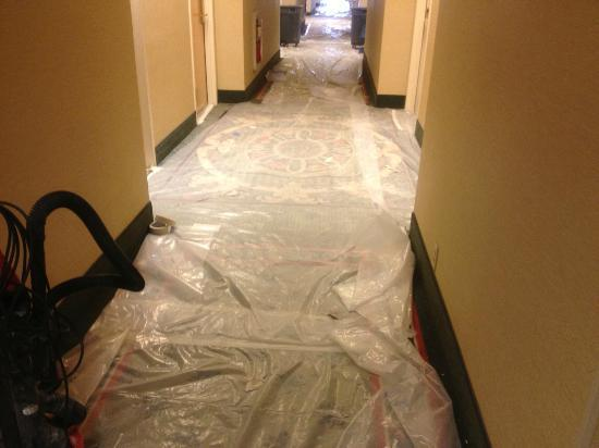 Comfort Inn &amp; Suites - York: Hotel currently under renovation. This is a picture of outside of the rooms on the third floor.