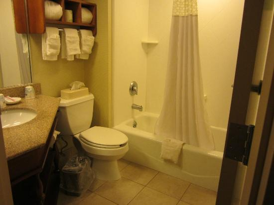 Hampton Inn Lancaster: bathroom