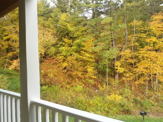 Studio Motel of Lake George: Rear view from room