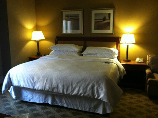 The Read House Historic Inn And Suites: King room