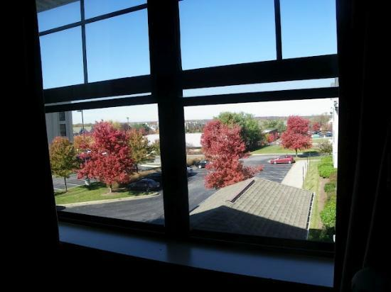 Extended Stay America - Columbia - Columbia Parkway: Another view from the window, fall season