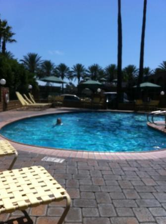 Super 8 Anaheim/Near Disneyland: pool
