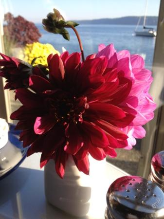 Blue Moon Beach House: fresh garden flowers on our breakfast table every day