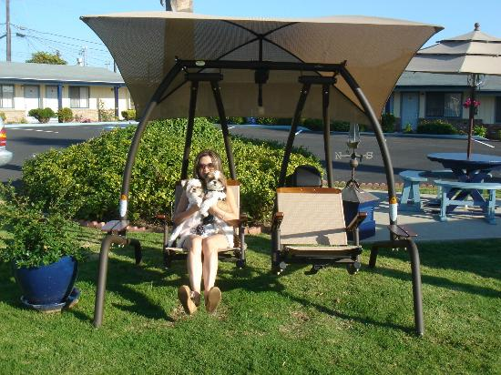 BEST WESTERN El Rancho: Garden swing