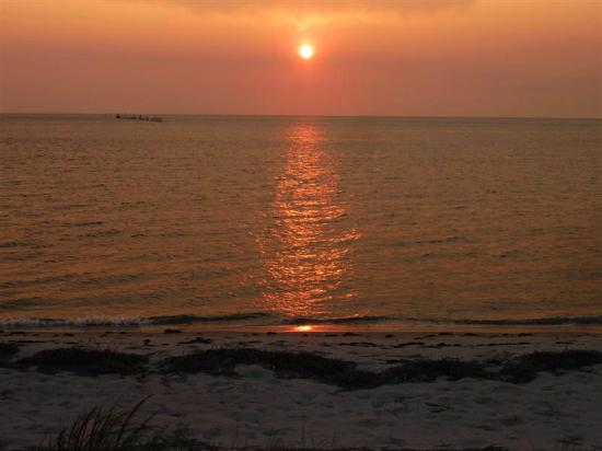 The Baywood Bed and Breakfast: This sunset could be yours