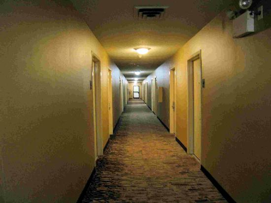 Red Roof PLUS+ Pittsburgh South Airport: Upstairs hallway - hot and dirty