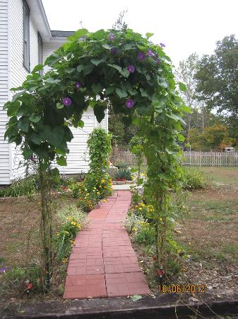 Amanda's Bequest - A Heritage Immersion Bed & Breakfast: Front walkway