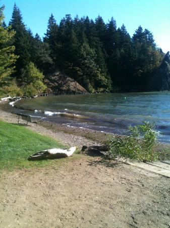 Skamania Coves Resort: Beach area