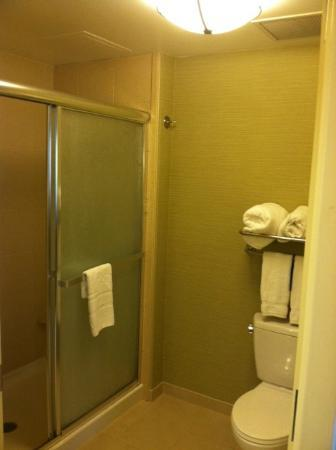 Homewood Suites West Palm Beach: Small but very clean