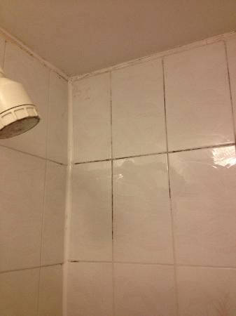 The Rossi: black mould in shower