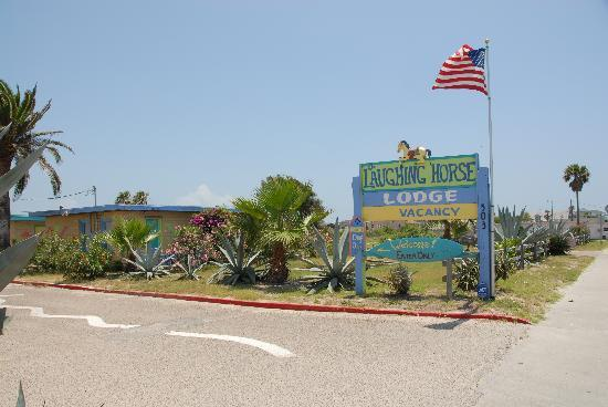 Photo of A Laughing Horse Lodge Port Aransas