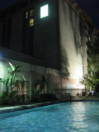 Embassy Suites Hotel Tampa-USF/Near Busch Gardens: The outdoor pool