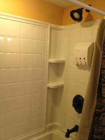 1840 Inn on the Main Bed and Breakfast: Shower