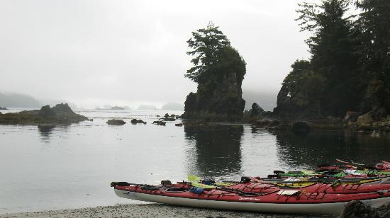 Barkley Sound, Canada: Kayaking around