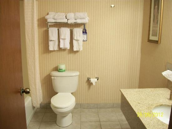 BEST WESTERN PLUS CottonTree Inn: Bathroom