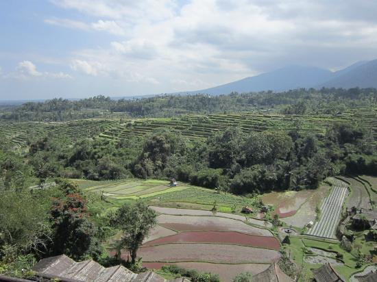 Baturiti, Indonesia: view