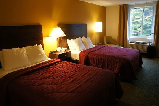 Comfort Inn & Suites: Double Room