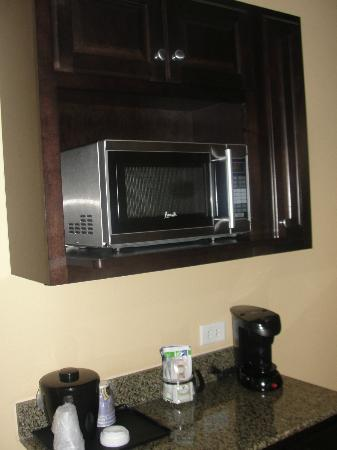 Holiday Inn Express & Suites Tampa USF-Busch Gardens: Room Amenities