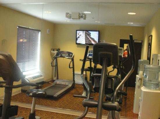 Holiday Inn Express &amp; Suites Tampa USF-Busch Gardens: Fitness Room