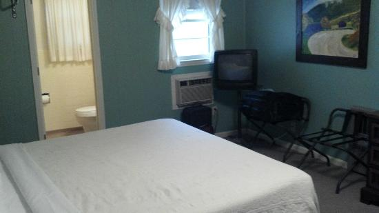 Alpen Acres Motel: Small room but adequate