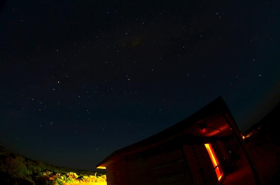 Hanson Bay Cabins: Night sky above the pitch dark cabin grounds