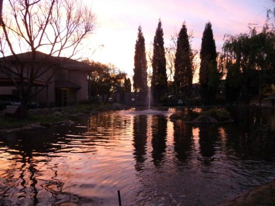 Kopanong Hotel and Conference Centre: Hotel grounds at sunset