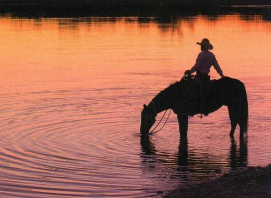 The Sugar & Spice Ranch: Relaxing trail rides