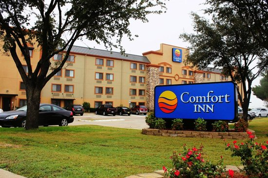 Comfort Inn: Hotel and grounds