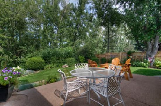Shangarry Bed and Breakfast: Patio in summer