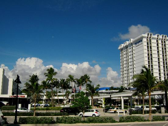 Bahia Mar Fort Lauderdale Beach - a Doubletree by Hilton Hotel: Morningview