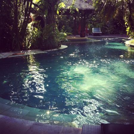 Sunny Blow Villa Jepun: The pool