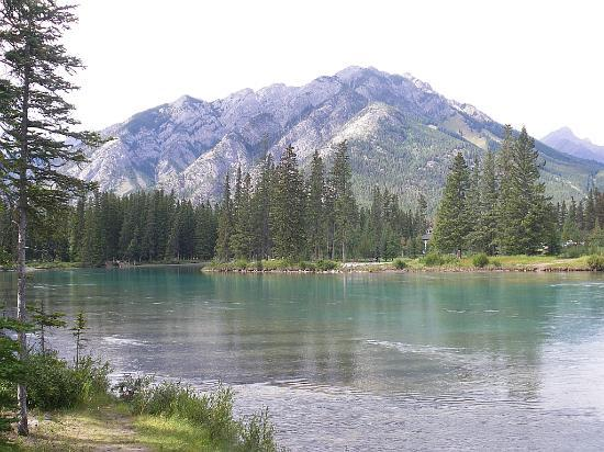 Banff Park Lodge Resort and Conference Centre: banff riverside walk