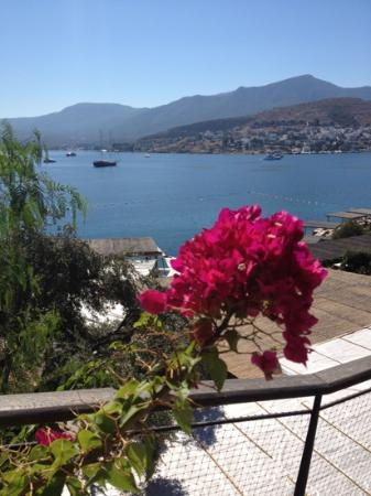 Macakizi Hotel Bodrum: the view from breakfast