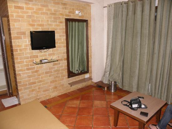 Chandralok Hotel: tv and nice decor
