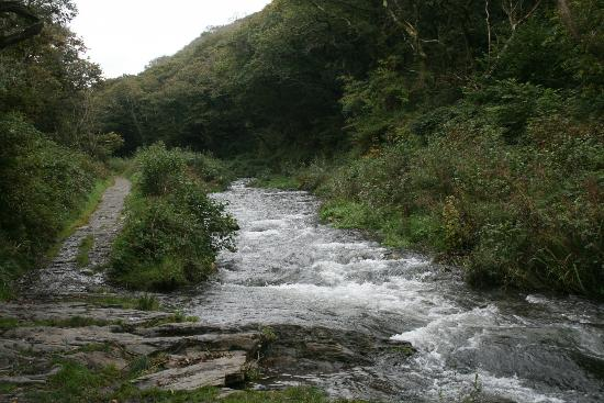 The Old Rectory St. Juliot: Path along the River Valency into Boscastle