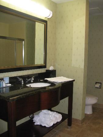 Hampton Inn Crossville: Crossville Hampton Inn Bath