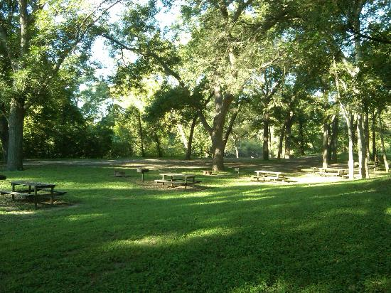 Fentress, TX: Shaded picnic area