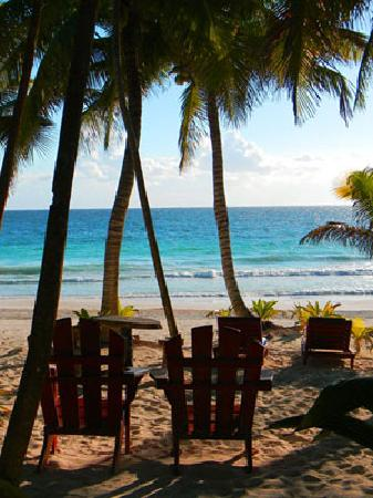 Ixchel Playa & Cabanas: getlstd_property_photo