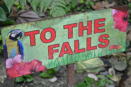 Somerset Falls: Sign on property