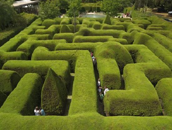 Ashcombe maze lavender garden shoreham australia Better homes and gardens website australia