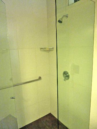 Diez Hotel Categoria Colombia: Bathroom features shower stalls