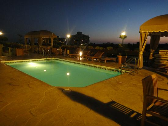 Le Montrose Suite Hotel: Roof Top Pool
