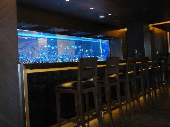 The Istanbul EDITION: Gorgeous fish tank that separates the bar & reception