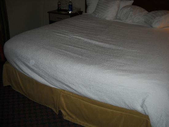 Holiday Inn New Orleans - Chateau Lemoyne: Hot dog bed