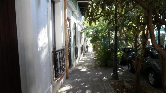 Caleta 64 Apartment: the neighborhood street